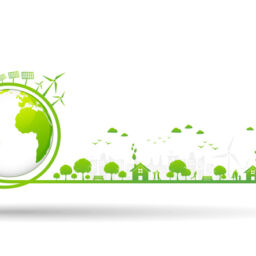 Sustainability: what is it?