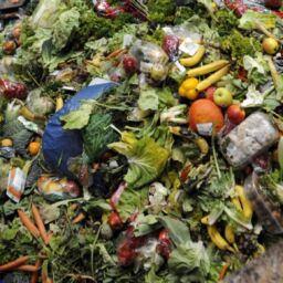Food waste: let's see some numbers!
