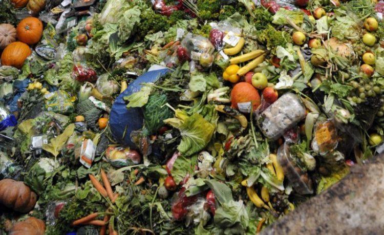 Rifiuti che diventano risorsa se avviati al compostaggio