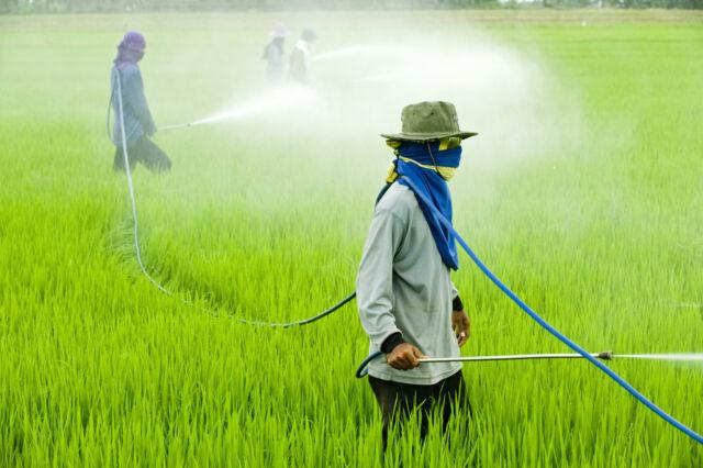 I veleni in agricoltura : Il glifosato