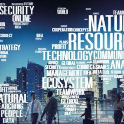 La responsabilità sociale impresa secondo Claude Bontorin